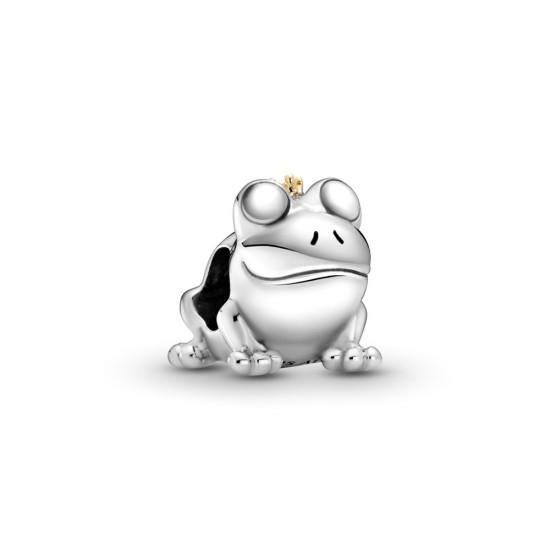 Visací přívěsek Dvoubarevný žabí princ
